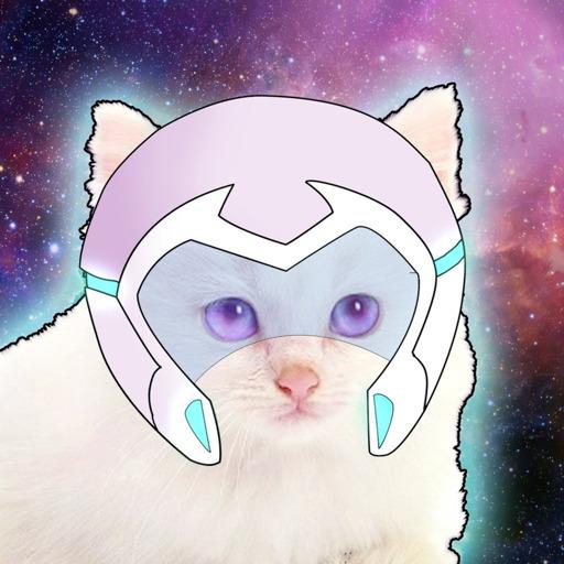 Quiznak! — *slides into askbox* precious space cats pls bless