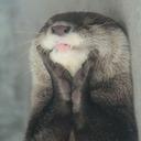blog logo of Welcome to Princess Otter's Kingdom