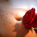 Raindrops and Roses tumblr blog logo