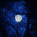 Dreaming tumblr blog logo