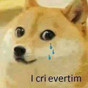 Image result for doge cry