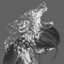 Lone wolf tumblr blog logo