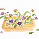 題名未設定 ヒアシンス パンジー ビオラ 春の花 フラワーアレンジメント 水彩 イラスト