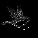 blog logo of holabird