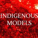 blog logo of INDIGENOUS MODELS