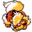 blog logo of Boof