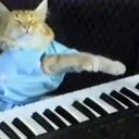 Play Him Off, Keyboard Cat