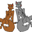 blog logo of Luke And Adrian, The Femboy Wolf Brothers