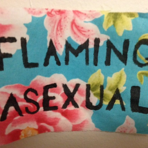 queerplatonic relationship checklist