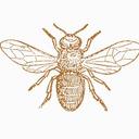 blog logo of oh honey !