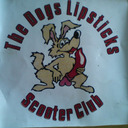 blog logo of DLSC95 lambretta,vespa