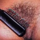 blog logo of Hairy Bush Is Back