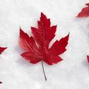 blog logo of Canadian Wonderland