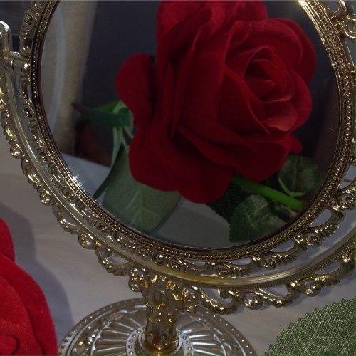 #red rose#rosa vermelha