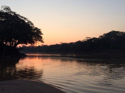 taken by me amazonas peru trip wildlife selva beautiful photography landscape so pretty amazing places rainforest lake own
