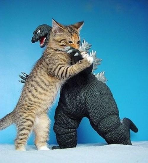 Godzilla Quotes: Godzilla Toy