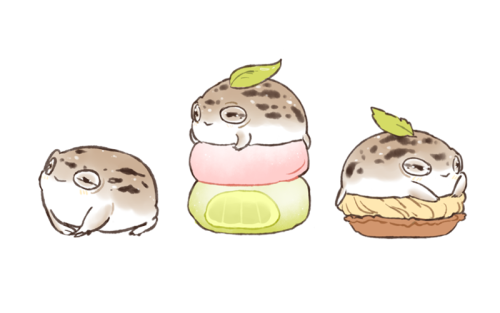 Frog Blog Jjak I Heard You Guys Like My Dessert Rain Frogs