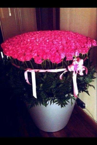 Ramo De Flores Tumblr