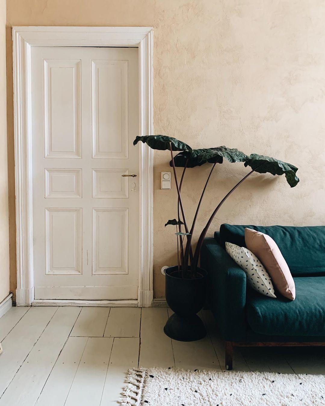 #plant#door#sofa#interiors