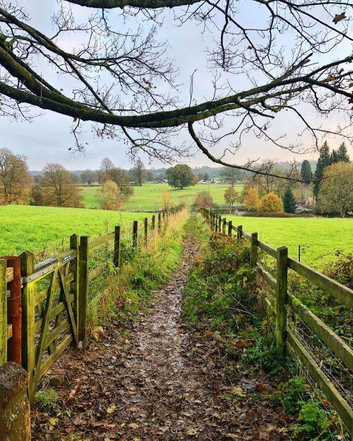 Country walk 🚶🏻♂️🍃🌳 #countryside #somerset #walking (at Somerset) https://www.instagram.com/p/B4vtd_OJGYW/?igshid=ttzd2iop6g4d #countryside#somerset#walking
