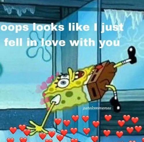 spongebob memes wholesome wholesomememes love fall in love