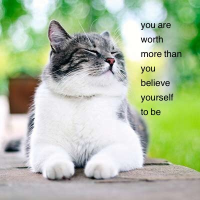 positive quotes on TumblrQuotes About Cats Tumblr