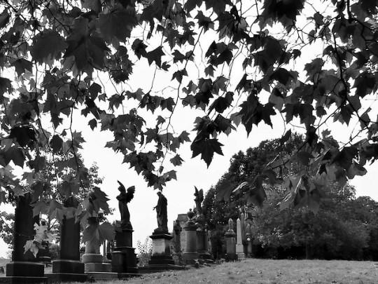 greenbank cemetery | Tumblr