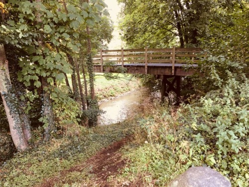 #nature#photography#forest#bridge#fairy tale#hidden treasure#limburg