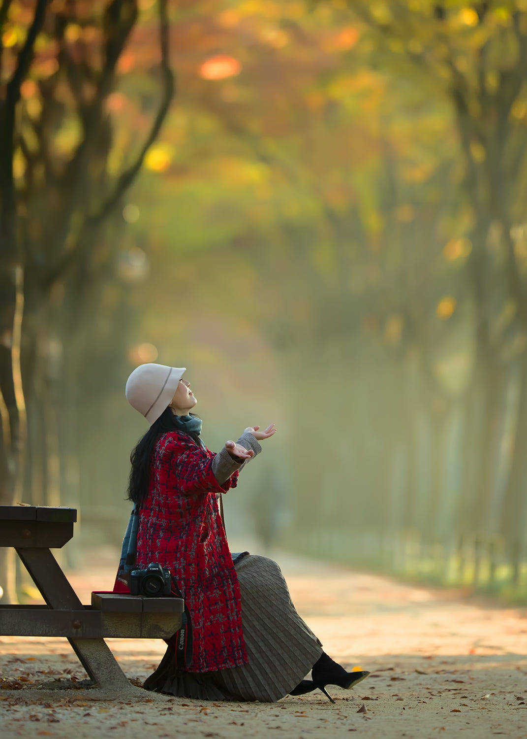 Autumn and foliage .. by Smoothy .