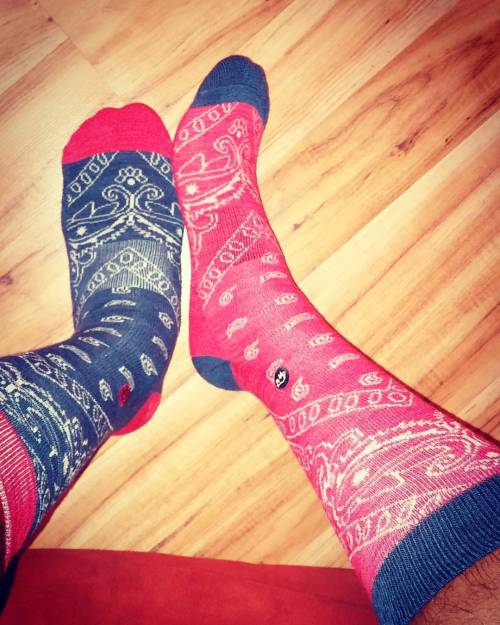 mysocks sockswag sockworship sockministry socks sockloversunite sockmaniac buffalosocks sockofthedays sockman sockfetishnation