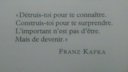 french literature quotes