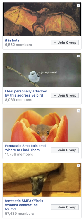 everentropy: alithographica: I'm not about to suggest that F*cebook isn't a miserable website with outright dangerous potential but the groups? golden My favorite is biological memes for ecological fiends. (I think that's the name? Something like that)  Wild green memes for ecological fiends! My people. #honorable mention to NUMTOT and the MTA memes