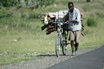 Bike Wood Ngorongoro To Arusha, Tanzania