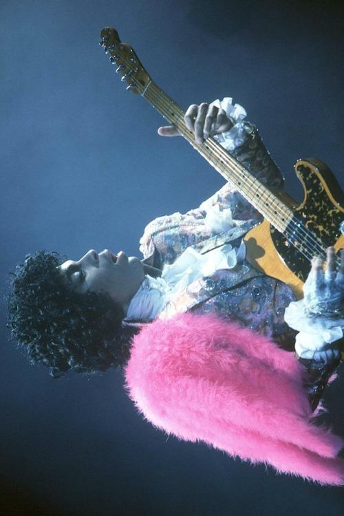 prince guitar music size shoe rock n& 039; roll