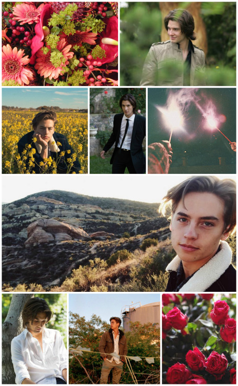 Tumblr Wallpaper Collages