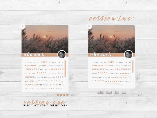 ♡ 𝐨𝐧 𝐡𝐢𝐚𝐭𝐮𝐬 ♡ — that's okay by @scftlcves preview