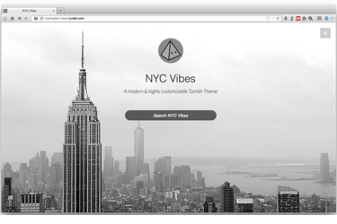 Manhattan Vibes